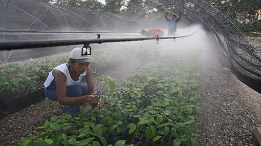 Empresas pagarán más por el uso del agua, asegura la ANA