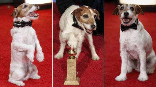 Uggie, el perro actor que ganó un Globo de Oro