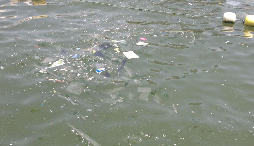 FOTOS: balneario de Ancón lució así de sucio tras el fin de semana