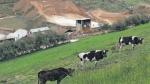 Región Cajamarca solo usa el 20% del agua que posee - Noticias de karla farro