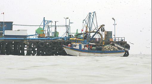 Producción pesquera peruana caería en 5% este año