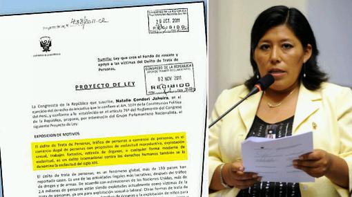 Legisladora oficialista presentó proyecto copiando contenido de Wikipedia
