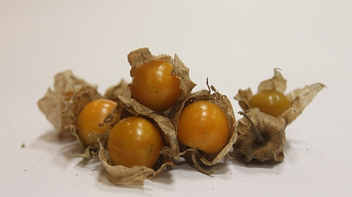 Aguaymanto y otras frutas peruanas llegan a Asia y Oceanía