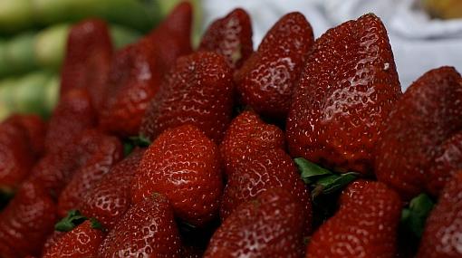 Comer frutos rojos ayudaría a combatir el Alzheimer