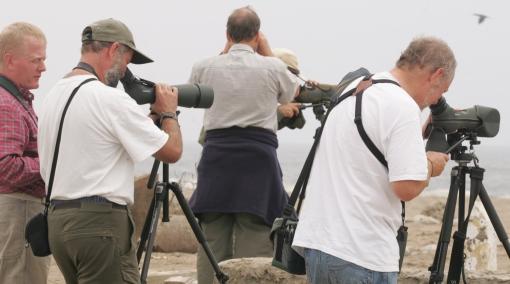 Perú volverá a organizar rally de avistamiento de aves en el 2013