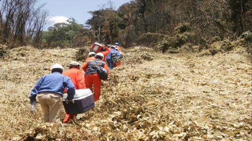 Kepashiato: senderistas que retuvieron a trabajadores robaron equipos de TGP