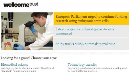 Células madre en discusión: investigadores piden a UE no reducir fondos para su estudio