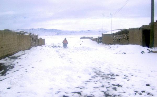 Cuidado: heladas serán más intensas en Arequipa, Moquegua, Tacna, Puno y Cusco