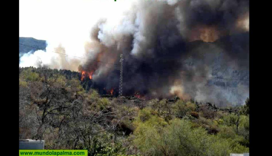 FOTOS: más de 200 personas desalojadas en las Islas Canarias por incendios forestales