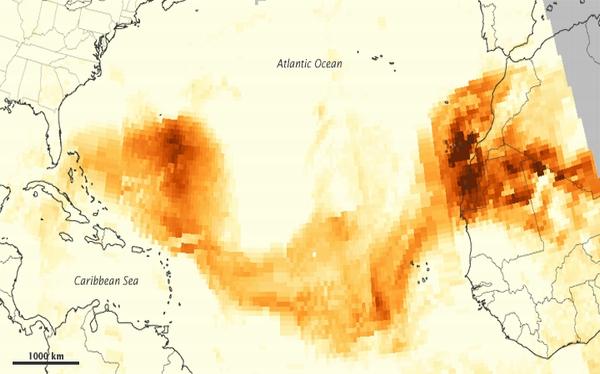 La Amazonia se sostiene gracias al desierto del Sahara