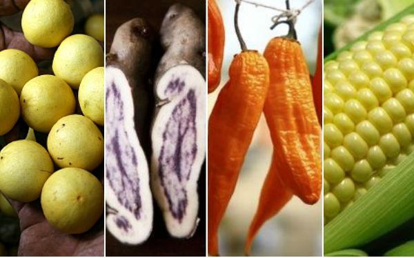 OPINA: ¿Cuál es el ingrediente estrella de la comida peruana?