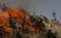 Cusco: incendio forestal amenaza centro arqueológico Wayna Taukaray - Noticias de alfredo mormontoy