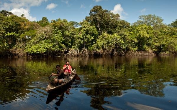 Minagri invertirá US$20 millones en realizar primer inventario forestal