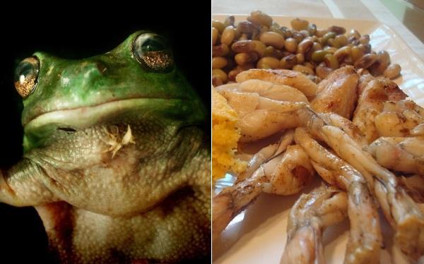 Excéntrica y fina: la rana como ingrediente en la cocina