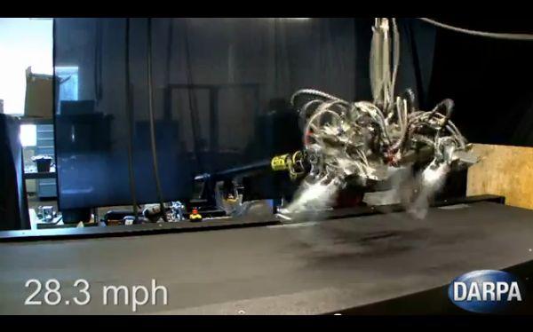 Guepardo robot superó la velocidad de Usain Bolt y alcanzó los 45 Km/h