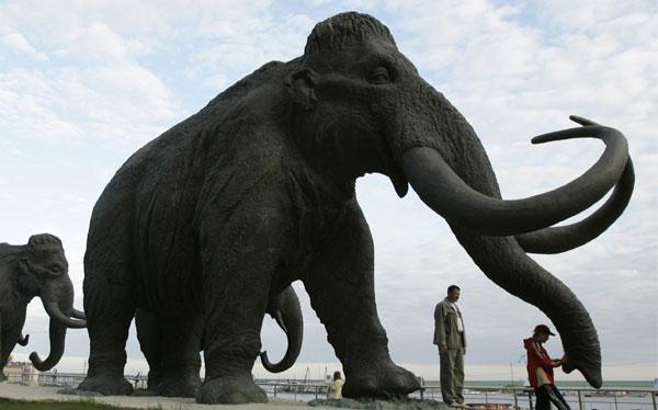 ¿Se puede clonar a un mamut? A fines de este año se sabrá
