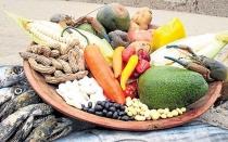 En la competencia de los alimentos, ganó el sabor - Noticias de beneficios del frejol