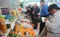 Diez empresas mexicanas buscan negocios en Expoalimentaria 2014 - Noticias de sector comercio