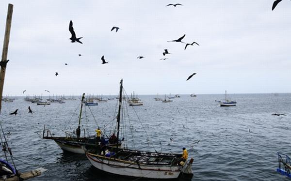 Piura: El Ñuro, caleta de pescadores y refugio para los amantes del surf