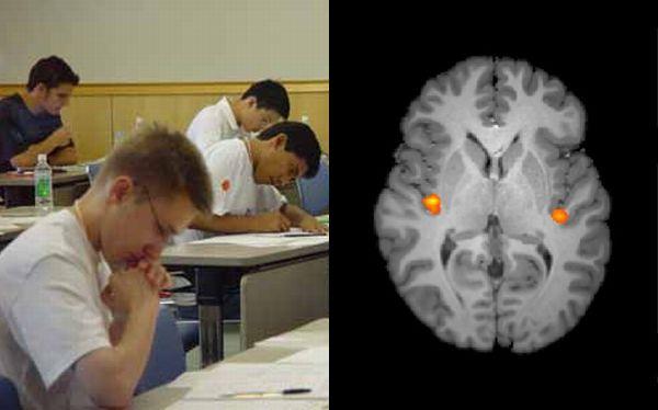 El miedo a las matemáticas activa un dolor en el cerebro