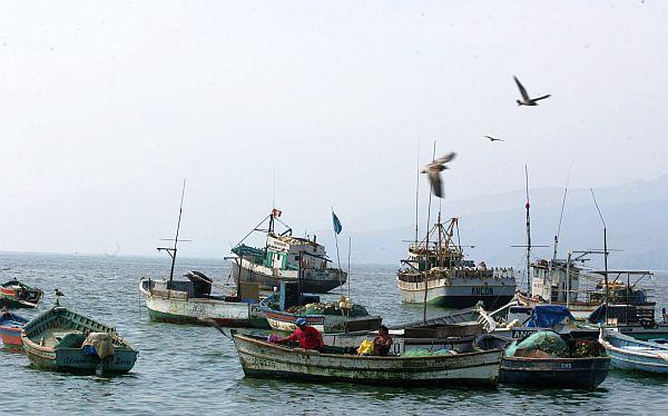 Realizarán auditoría a Imarpe para validar sus estudios sobre pesca