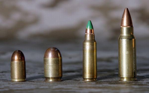 Biólogos piden abandonar el uso de balas de plomo en la cacería