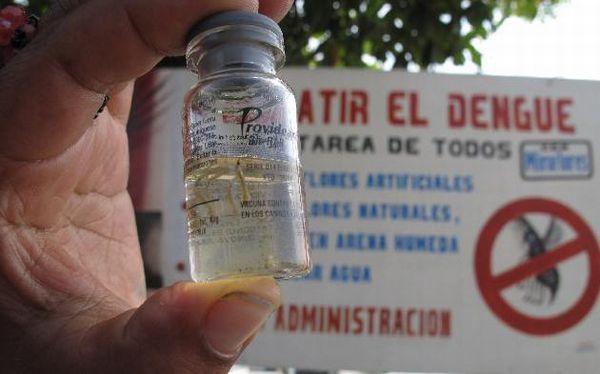 Loreto fue declarada en alerta amarilla por casos de dengue