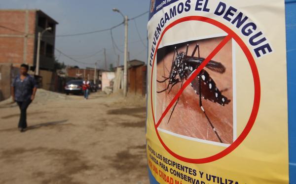 San Martín: hospitales fueron declarados en alerta amarilla por dengue