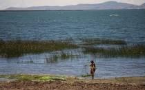 Puno: fuertes vientos dañaron jaulas de truchas y dejaron grandes pérdidas - Noticias de pobladores de pilcuyo