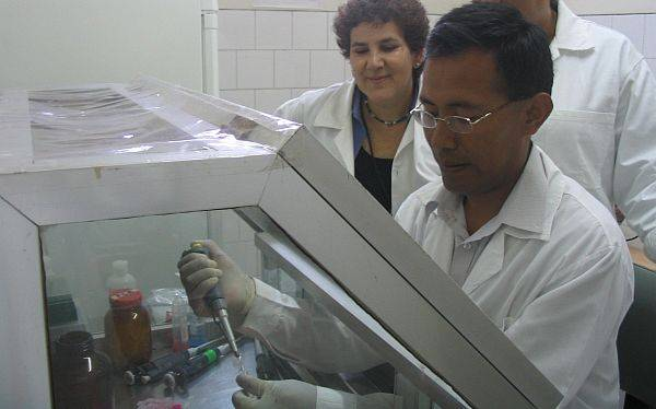 Número de casos de dengue en Ucayali se mantiene estable
