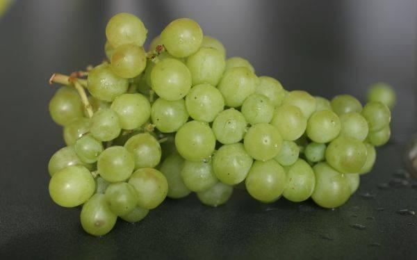 ¿Por qué se comen 12 uvas por Año Nuevo?: el irreverente origen de la tradición