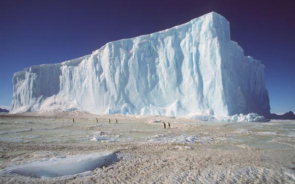 Rusia bloqueó la protección medioambiental de dos regiones de la Antártida