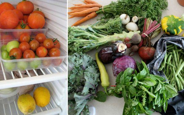 Aprende cómo no salirte de la dieta, según un estudio