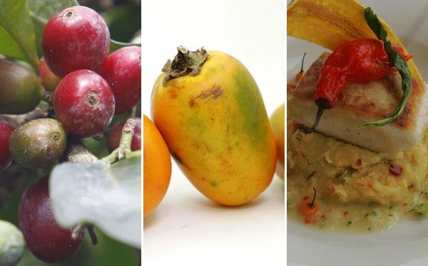 Cinco alimentos de la selva que tendrías que incluir en tu cocina