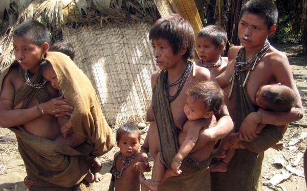 La ampliación de lote 88 afectaría a los indígenas en aislamiento