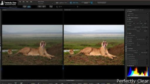 Perfectly Clear acaba de lanzar su primera aplicación de escritorio para arreglar sus fotos.